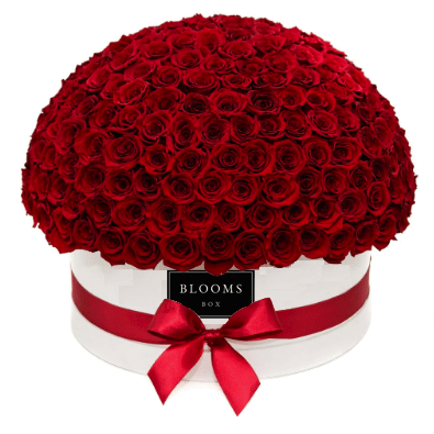Dome-red-200-400-order-flowers-online-flower-delivery-melbourne
