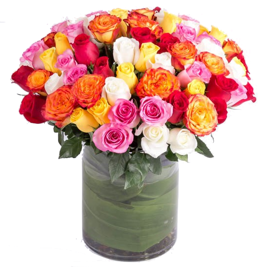 100-assorted-roses-550×550-25903