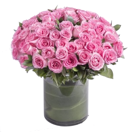 100-roses-pink-amour-blooms-box