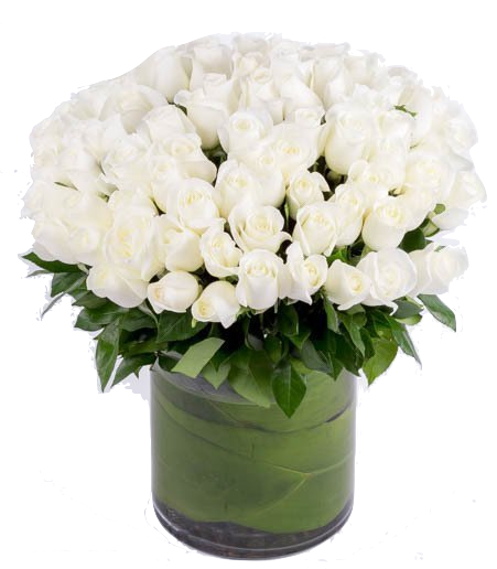 100-roses-white-amour-blooms-box